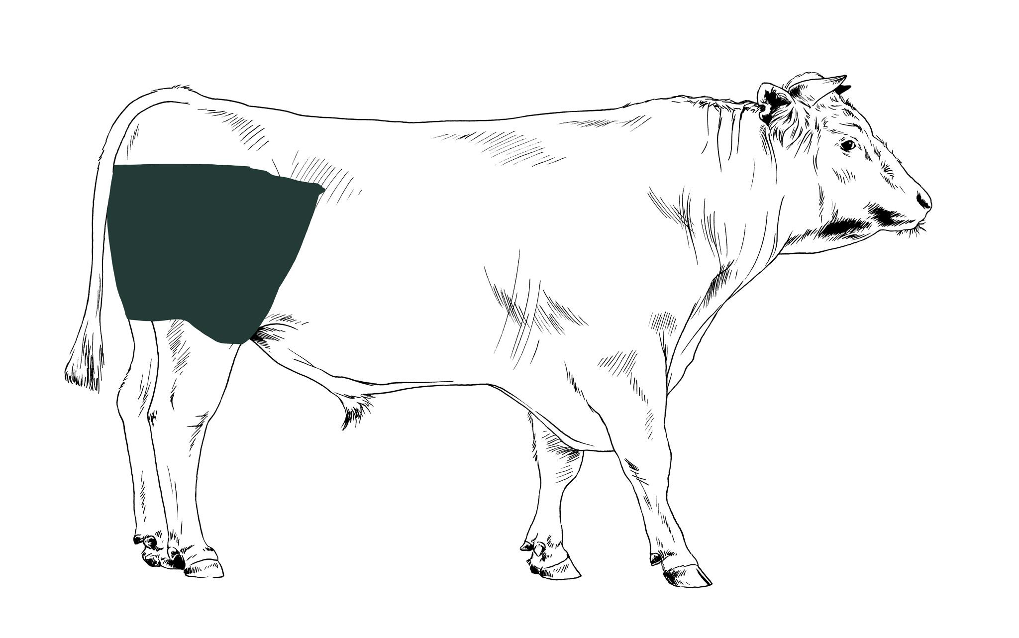 Rinderrouladen online bestellen